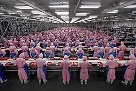 chinaworking.jpg