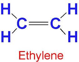 ethylene.jpg